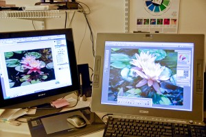 Monitor  & Wacom Cintique