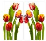 Canvas Wall Art - Tulips