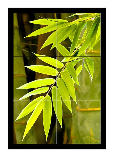 Mural Tile Art Bamboo Leaves I By Jackie Jacobson