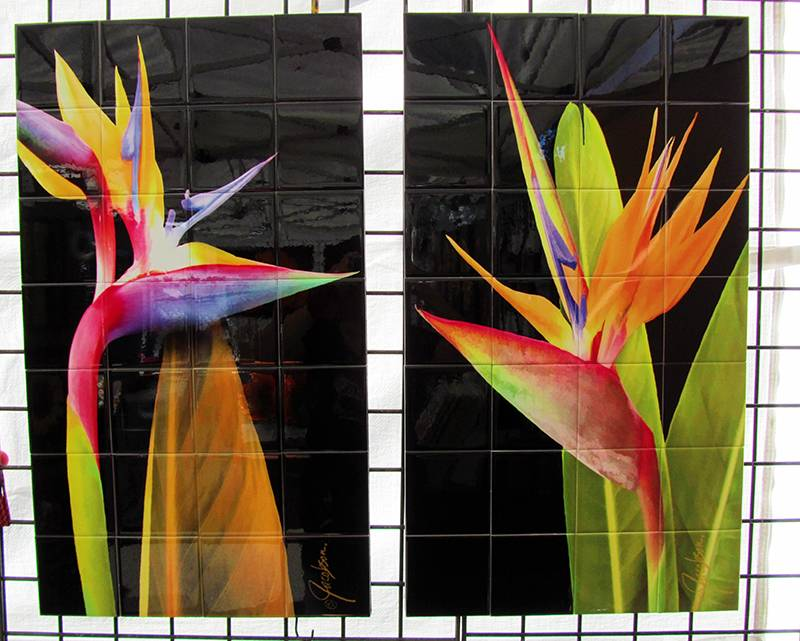 Murals - Tile Art - Bird of Paradise