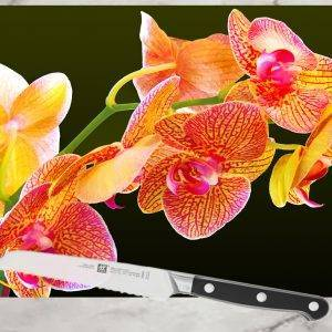 orchid flower branch painting